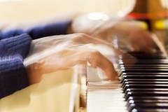 Piano Player (R Perdigo) Tags: select pianist piano player music sound moviment canon 350d 55250