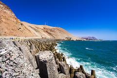 Chile 2013-1686 (sebtac) Tags: chile2013 chile 2013 arica outdoor sea shore animals