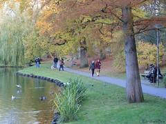 Autumn Walk (ChristianeBue) Tags: deutschland germany tyskland schleswigholstein lübeck herbst autumn fall bäume trees herbstfärbung mühlenteich wasser water spaziergang