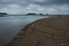 gola del ter (teve61) Tags: goladelter medas playa beach