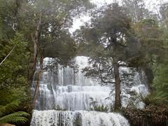 Lacy cascade (LeelooDallas) Tags: australia tasmania mount field national park russell falls landscape dana iwachow fuji finepix hs20 exr water waterfall tree forest