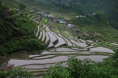 Batad Rice Terraces, Cordilleras, Ifugao, Northern Luzon, Philippines (ARNAUD_Z_VOYAGE) Tags: islands island philippines landscape boat sea southeast asia city people volcano amazing asian moutains sunset street action cars jeepney tricycle architecture river tourist capital town municipality baguio northern luzon filipino filipina colors building house provincial province village batad rice terraces cordilleras ifugao unesco world heritage altitude mountain mountains field
