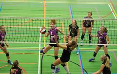 1B260593 (roel.ubels) Tags: vv utrecht eurosped galgewaard volleybal volleyball 18 finale nationale beker