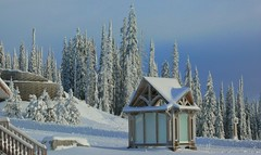 Skyrim (Eddie the Explorer) Tags: snow bigwhite bc britishcolumbia canada skyrim beautiful winter powder hut trees