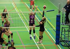 1B260481 (roel.ubels) Tags: vv utrecht eurosped galgewaard volleybal volleyball 18 finale nationale beker