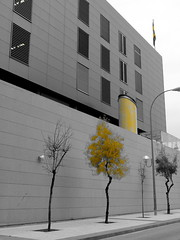 The Police Station (danielodyssey (fujilover)) Tags: colour select yellow police station building architecture grey black white flag