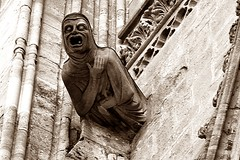 9 - Bayeux, Cathédrale Notre-Dame, Gargouille (melina1965) Tags: normandie calvados bayeux octobre october 2016 nikon d80 sculpture sculptures sépia sepia façade façades église églises church churches gargouille gargouilles gargoyle gargoyles