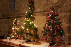 Christmas Tree Festival 2 (ianwyliephoto) Tags: standrewschurch christmastreefestival 2016 corbridge christmas lights twinkle festive tynevalley tynedale northumberland