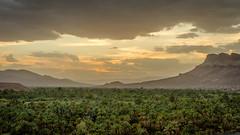 Draa Valley (Mopple Labalaine) Tags: soussmassadraa morocco ma draa valley fertile oasis sunset landscape marokko atlas palm palms river