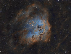 IC410 The Tadpoles (Paddy Gilliland @ Image The Universe) Tags: ngc ic ic410 1893 space stars nebula nebulae tadpoles night astro astropic astrophoto astrophotography dust cloud gas sky astrometrydotnet:id=nova1853192 astrometrydotnet:status=solved