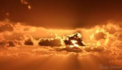 Embrace of the sun
