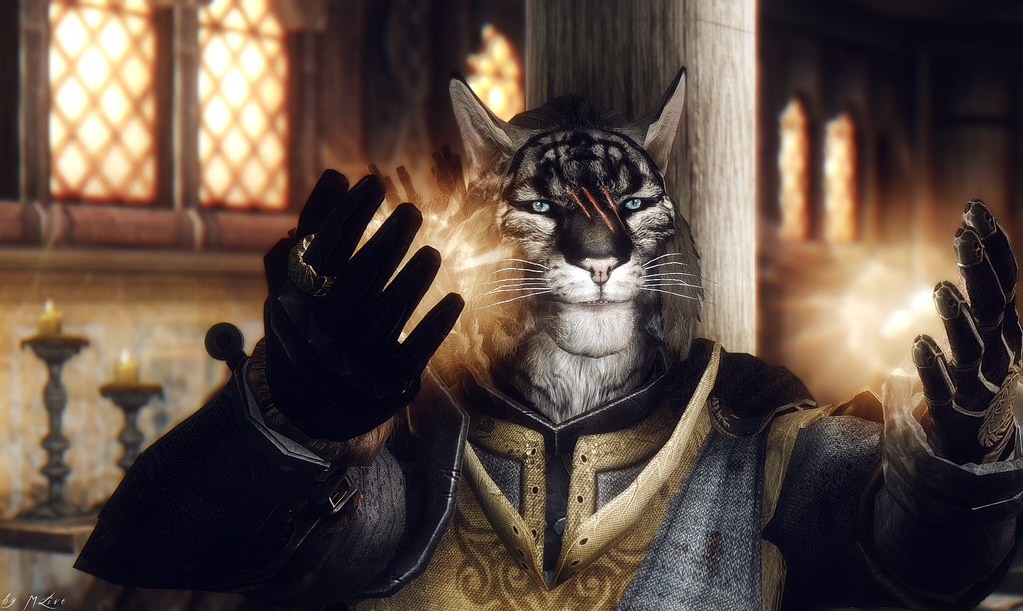 The World's newest photos of skyrim and teso - Flickr Hive Mind