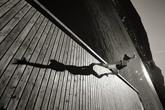 Fjorden Yoga! (aha42   tehaha) Tags: shadow bw woman water norway yoga norge friend h2o fjord bergen verftet noreg flickrsbest francescaalviani overtheexcellence colorefexpro30 nikoncapturenx2 nikkorafsdx1024mmf3545ged nikond7000