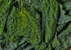 Verdant (MPnormaleye) Tags: food plants green cooking wet water kitchen vegetables leaves 35mm eating textures utata dining veggies eats groceries arrangement hdr tender