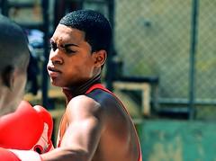 Young Boxer (Lou Morgan) Tags: boy america training la havana cuba young teen latin boxer rafael boxing habana gym teenage trejo