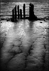 Humber pylons (beninfreo) Tags: blackandwhite river mud decay jetty yorkshire hull humber fujixf1
