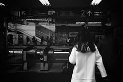 2014.01.13 Yokohama (nobring) Tags: street leica blackandwhite bw film monochrome blackwhite streetphotography d76 yokohama summilux 横浜 m4 モノクロ 白黒 presto400 フィルム undiluted bwfp 7n4vju
