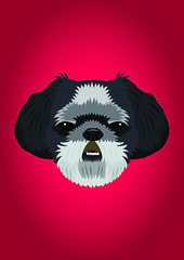 Shih Tzu (Three Black Dots) Tags: dog color colour cute classic beautiful beauty fashion vintage puppy amazing cool nice mod colorful pretty colours sweet girly unique awesome shihtzu style funky retro terrier smalldog romantic colourful teacup brilliant depths toydog puppie shaggydog