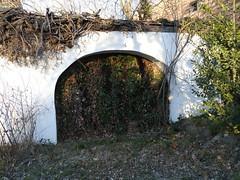 Verwachsen   /   Overgrown (rudi_valtiner) Tags: gate ivy tor niedersterreich hederahelix efeu loweraustria maronirunde salloder