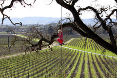 Girl on Rope (hiland_hall) Tags: girl youth vineyard spring wine rope