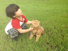 We walk Party today : ) (Zorie Huang) Tags: park morning light party portrait pet baby cute love girl grass canon asian kid child innocent taiwan trust lovely taiwanese tenderness twoyearold kidandcat iphone5 zorie walkthecat