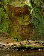 Finnich Glen (Ben.Allison36) Tags: scotland natural devils glen gorge geology pulpit stirlingshire theeagle outlander finnich