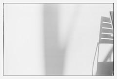 summer light (look-book) Tags: leica bw white black film look analog book photo blackwhite und foto trix d76 fotos handheld mp analogue lookbook selfdeveloped 949 drumscan analogous imacon analogicas análogo blackandwhitesw