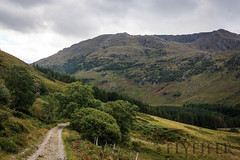 _MG_5042 (Flyfifer Photography) Tags: greatbritain highland invernessshire knoydart places scotland unitedkingdom