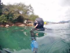 GOPR5935 (ambrogi_taubate) Tags: naturezaselvagem marinha mergulhando ubatuba sp brasil naturezamarinha fantstica apneia 10m setembro primavera 2016