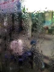 Rajshahi, 2016. (rahat_kabeer) Tags: dew glass motorbike dad rajshahi 2016 htc cellphone phonephotography goodmorning 6am cold winter wetglass color bus bangladesh street streetlife streetportrait streetphotography