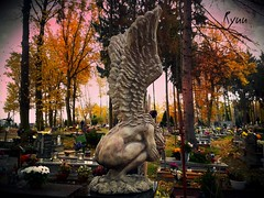Huddled angel for All Saints Day (Ryuu竜) Tags: cemetery allsaintsday allhallows allsoulsday angel sculpture stone artwork naked woman wings angelic holy saint catholic tombs graves graveyard tomb grave huddled figure art inmemory heaven autumn trees thefall november autumnal orange leaves warmtones cloudy darkatmosphere sadness