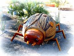 lady 'n waiting (milomingo) Tags: wood wooden organic art ladybug ladybeetle bug beetle insect organicart desertbotanicalgarden phoenix arizona outdoor arid desert texture symmetry dot round circle geometry linear southwest organicsculpture
