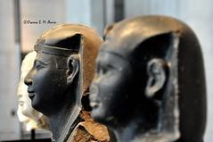 Head of Statues of Egyptian Pharaohs (Sumer and Akkad!) Tags: egypt ancient ruler pharaoh king head statue sculpture memphis thebes abydos amarna oldkingdom newkingdom middlekingdom intermediateperiod sais ptolemy romanegypt greek alexander lateperiod