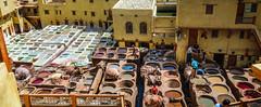 Chouara Tannery (Anthony) Tags: fes fesboulemane morocco ma