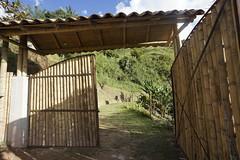 _DSC9753 (nonesmanneslond) Tags: finca barbosa colombia antioquia medellin farm farmlife