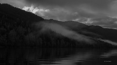 Beyond Shadows (Jim Skarli) Tags: bw blackandwhite seascape landscape fog mist speiling reflection water nature forest lake norway scandinavia serene nordic greyscale