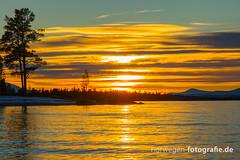 DSC03131 (norwegen-fotografie.de) Tags: norw norwegen norway norge femunden femundsmarka villmark hedmark see wildnis wald landschaft