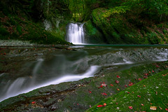 Eistobel. (doll.thomas7) Tags: herbst autumn waterfall germany water green leaves wood long exposure nd filter red travel bavaria
