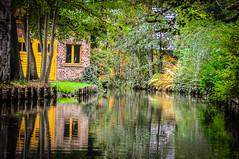 House on the canal (Subyello) Tags: dariuszszewczak germany spreewald canal flowers lightroom nikond90 presets river rzeka water