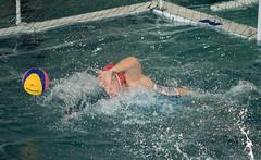 2C040837 (roel.ubels) Tags: len euro league waterpolo sport topsport utrecht uzsc 2016 krommerijn women