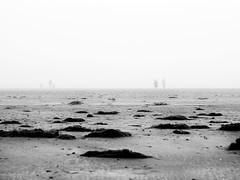 eintragung ins nichts (repetition) (superstarfighter) Tags: langeoog nordsee northsea island shoreline beach fog foggy running sw schwarzweis blackwhite shore sand bleak people kids olympusomdem10markii olympusomd mzuiko45mm18 mzuikodigital45mmf18 90mm telephoto