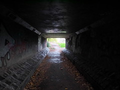 (turgidson) Tags: panasonic lumix dmc g7 panasoniclumixdmcg7 panasonicg7 micro four thirds microfourthirds m43 g lumixg mirrorless olympus m zuiko digital ed 12mm f20 f2 olympusmzuikodigitaled12mmf20 prime lens primelens wide angle wideangle silkypix developer studio pro 7 silkypixdeveloperstudiopro7 raw p1080511 dublin ireland milltown tunnel underpass pedestrian dark