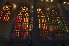 NH0A3929s (michael.soukup) Tags: barcelona sagradafamlia sagrada familia basilica church stainedglass color colorful windows nave interior gaudi churchoftheholyfamily catholicchurch artnouveau architecture neogothic spain catalonia