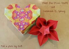 Herz-Schachtel  H.-W. GUTH Carambola  Carmen Sprung (esli24) Tags: heartbox singlesheetorigami hwguth carmensprung ilsez esli24 carambola origami origamibox origamischachtel origamiblühte origamiflower