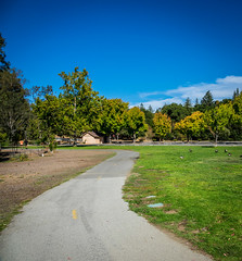 Jogging at Vasona Lake County Park (randyherring) Tags: ca california santaclaracountyparks canadagoose vasonalakecountypark nature losgatos afternoon goose park lake recreational outdoor brantacanadensis unitedstates us