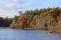 Autumnal Beauty (Read2me) Tags: autumn jacobspond trees leaves colorful orange pree cye she water lake pond agcgsweepwinner 9e thechallengefactory