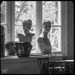 les bustes DxOFP b&W LM+50 1002686 (mich53 - thank you for your comments and 3M views!) Tags: antiquaire monochrome noiretblanc carr bustes vieilleschoses contrejour fentre leicamtype240 summiluxm11450asph antique shop blackandwhite square busts oldthings backlight window explore antiquity 2016 vacances antiquar einfarbig platz bsten altedinge gegendaslicht fenster explores antike rangefinder entfernungsmesser jahrgang flohmarkt