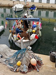 Im Hafen von Arenal, Mallorca, Spanien (Anne O.) Tags: 2015 balearischeinseln illesbalears sarenal spanien panoramio6954847125611553
