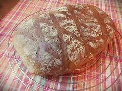 Bread #9 - Dinkel (# annola) Tags: bread pane brot pain baking panificare dinkel farro spelta spelt