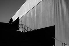 Untitled (RFVT) Tags: humaningeometry humanfactor geometry stripes shadows creativeshadows urbanvisions urbanlandscape urbancompo streetphoto streetcompo ricohgriii